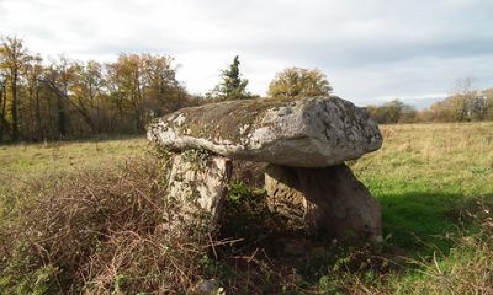 PARNAC - Indre